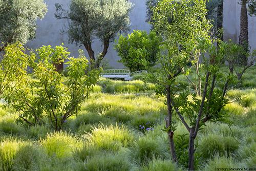 le jardin le jardin secret marrakech - Jardin Marrakech