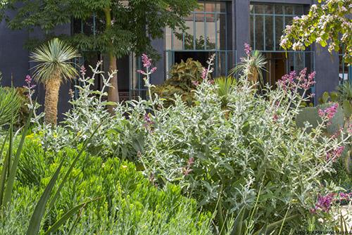 le jardin le jardin secret marrakech - Le Jardin